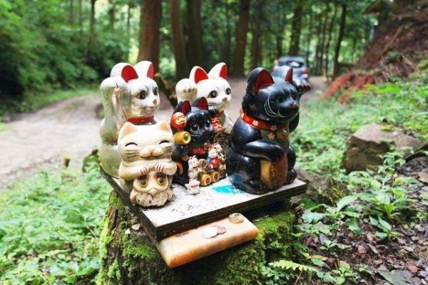 金持神社の招き猫たち