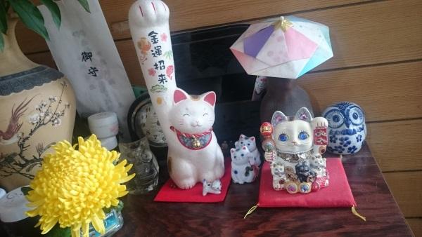 手が長い招き猫とたくさんの招き猫
