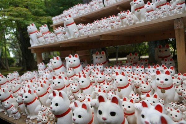 招き猫の由来と招き猫にゆかりのある神社で開運【開運招き猫】